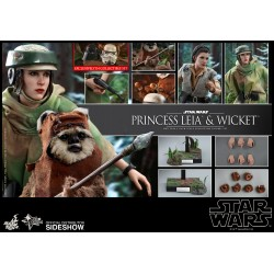 Princess Leia & Wicket Sixth Scale Figure Set  Star Wars Episode VI: Return of the Jedi - Movie Masterpiece Series